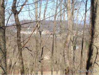 43  Springhead Court  , Arden, NC 28704 (MLS #580409) :: Washburn Real Estate