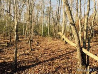 Lot 7  Mcowenben Pass  , Lake Lure, NC 28746 (#580435) :: Caulder Realty and Land Co.