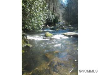 tract 14  Hemlock Falls Trail  , Hendersonville, NC 28792 (#580469) :: Caulder Realty and Land Co.