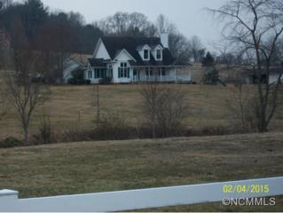 10  Cross Creek Court  , Mills River, NC 28759 (#580519) :: Exit Realty Vistas