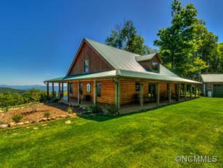 925  Mckinney Gap Ridge  , Burnsville, NC 28714 (#580520) :: Exit Realty Vistas
