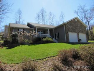 35  Oak Apple Lane  , Hendersonville, NC 28792 (#580539) :: Caulder Realty and Land Co.