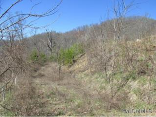 Lot 14  Riverstone Place  , Cullowhee, NC 28723 (#580596) :: Exit Realty Vistas