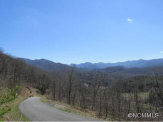 Lot 20  Riverstone Place  , Cullowhee, NC 28723 (#580603) :: Exit Realty Vistas