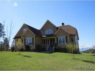 276  Chestnut Oak Tr  , Rutherfordton, NC 28139 (#580672) :: Exit Realty Vistas