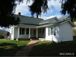 778  Turkey Creek Road  , Leicester, NC 28748 (#580907) :: Exit Realty Vistas