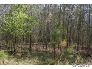 LOT 19  Golden Eagle Drive  , Henrietta, NC 28076 (#580971) :: Exit Realty Vistas