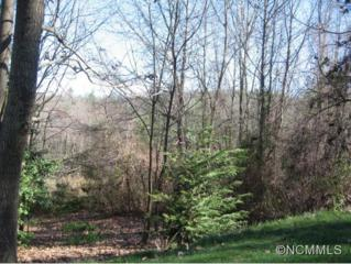 391  Dunroy Drive  , Flat Rock, NC 28739 (#581103) :: Puffer Properties