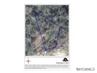 115  High Fields Ct  , Hendersonville, NC 28791 (#581296) :: Exit Realty Vistas