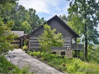 65  Sugar Maple  , Mills River, NC 28759 (#581366) :: Exit Realty Vistas