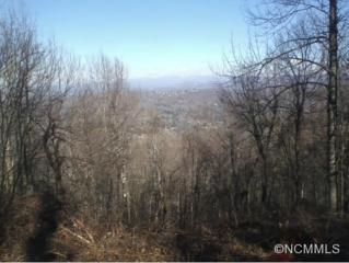 0000  Winter Holly Lane  , Laurel Park, NC 28739 (#581736) :: Exit Mountain Realty