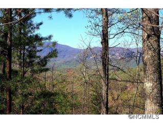 26  Hawks Nest Trail  , Lake Lure, NC 28746 (#582124) :: Exit Realty Vistas