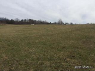 9  Buck Branch Road #9  , Mill Spring, NC 28756 (#582126) :: Exit Realty Vistas