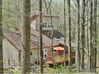 341  Webb Cove  , Asheville, NC 28804 (#582148) :: Exit Realty Vistas