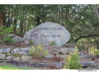 1114  Mills River Way  , Mills River, NC 28759 (MLS #582175) :: Washburn Real Estate