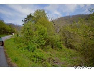 61  Cathey Cove Road  , Bethel, NC 28786 (#582224) :: Exit Realty Vistas