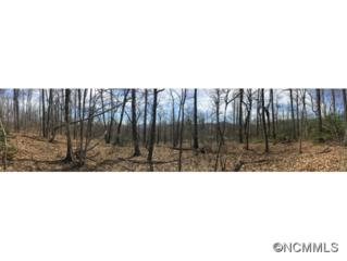 Lot 28  Burnt Ridge Trail  , Black Mountain, NC 28711 (#582260) :: Exit Realty Vistas