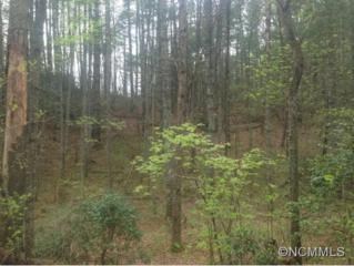 9999  Gap Creek  Rd  , Fletcher, NC 28732 (#582309) :: Puffer Properties