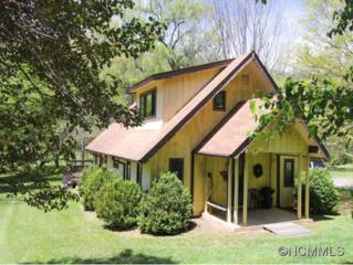 272  Pinners Cove  , Asheville, NC 28803 (#582341) :: Exit Realty Vistas