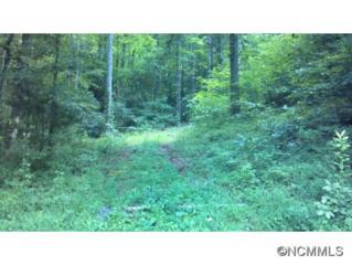 364  Rock Creek Road  , Black Mountain, NC 28711 (#582460) :: Exit Realty Vistas