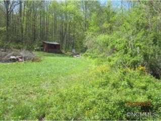 TBD  Walker Cove Road  , Black Mountain, NC 28711 (#582468) :: Exit Realty Vistas