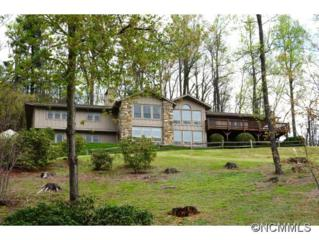 753  Old Orchard Drive  , Hendersonville, NC 28739 (#582507) :: Puffer Properties
