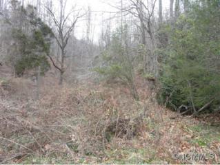 152  Cedar Creek Rd  , Black Mountain, NC 28711 (#582534) :: Exit Realty Vistas
