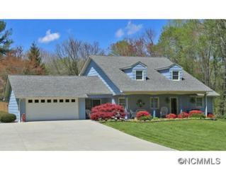 83  Greenbriar Drive  , Waynesville, NC 28786 (#582673) :: Exit Realty Vistas