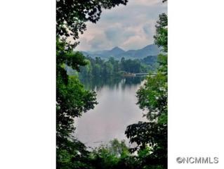 200  Crum Dr  , Lake Junaluska, NC 28745 (#582718) :: Puffer Properties