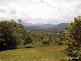 Lot 10  Hunters Trail  , Hendersonville, NC 28739 (#582819) :: Caulder Realty and Land Co.
