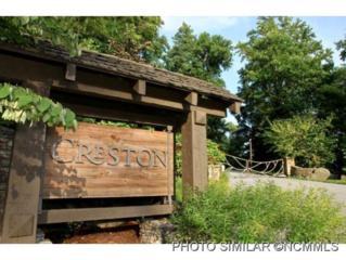 330  Verbena Drive  , Black Mountain, NC 28711 (#583073) :: Exit Realty Vistas
