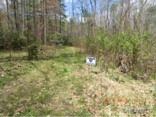 00  Crabtree Road  , Spruce Pine, NC 28777 (#583164) :: Exit Realty Vistas