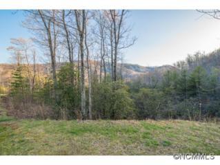 28  Trillium Lane  , Black Mountain, NC 28711 (#583235) :: Exit Realty Vistas