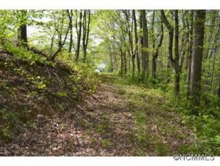 4  Lauren Lane  , Candler, NC 28715 (#583353) :: Exit Realty Vistas