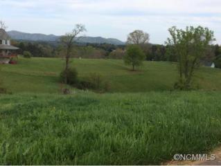 0  Horizon Way  , Alexander, NC 28701 (#583487) :: Exit Realty Vistas