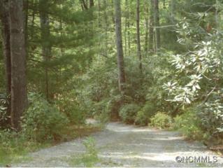 Lot 9  Deerhollow Lane  , Zirconia, NC 28790 (#583539) :: Exit Realty Vistas