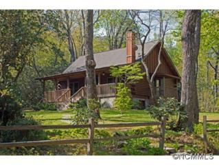 53  Old Apple Wagon Road  , Black Mountain, NC 28711 (#583686) :: Exit Realty Vistas