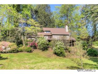 207  Wood Dale Drive  , Hendersonville, NC 28791 (#583944) :: Exit Mountain Realty