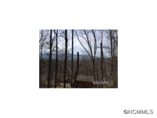 14  Painted Trillium Trail  , Black Mountain, NC 28711 (#584136) :: Exit Realty Vistas