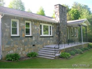 338  Grant Mountain Road  , Hendersonville, NC 28792 (#584410) :: RE/MAX Four Seasons Realty