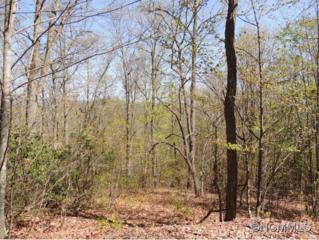 68  Cove Springs Drive  , Weaverville, NC 28787 (#584519) :: Exit Realty Vistas