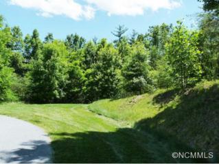 208  Didrikson Way  , Hendersonville, NC 28739 (MLS #585109) :: Washburn Real Estate