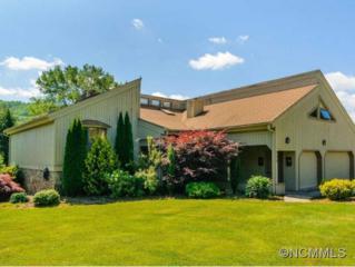 226  Newport Rd.  , Hendersonville, NC 28739 (#585192) :: Exit Realty Vistas