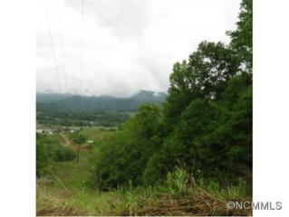Off  Jonathon Creek  , Waynesville, NC 28785 (#585249) :: Puffer Properties
