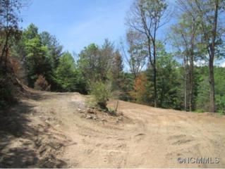 225  Cedar Hill Dr  , Clyde, NC 28721 (#585341) :: Exit Realty Vistas