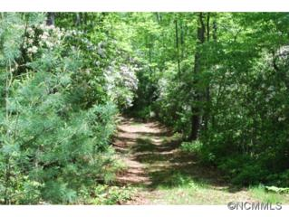 TBD  Off Old Hwy 280  , Pisgah Forest, NC 28768 (#585386) :: Exit Realty Vistas