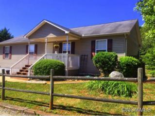 15  Shomee Lane  , Alexander, NC 28701 (#585394) :: Exit Realty Vistas