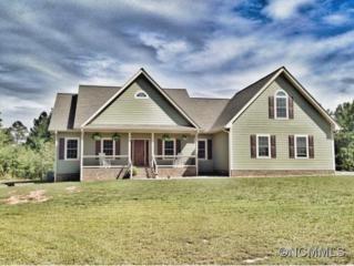 185  Brians Way  , Rutherfordton, NC 28139 (#585402) :: Exit Realty Vistas