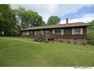 101  Clark Street  , Weaverville, NC 28787 (#585450) :: Exit Mountain Realty