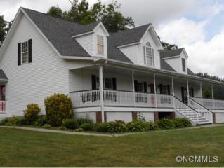 51  Chelsea Nix Lane  , Hendersonville, NC 28792 (#585569) :: RE/MAX Four Seasons Realty